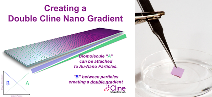 Cline Gradient Nano Surfaces and Nano Surfaces