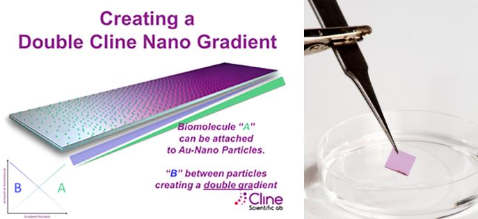 Cline Gradient Nano Surfaces and Nano Surfaces